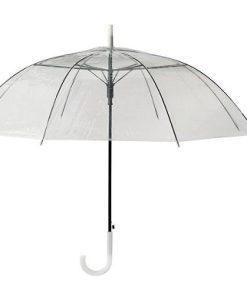چتر سفید