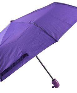 چتر بنفش